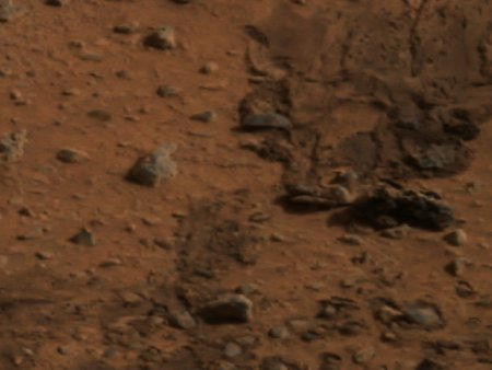 These marks in the martian soil were made by Spirit's airbags.